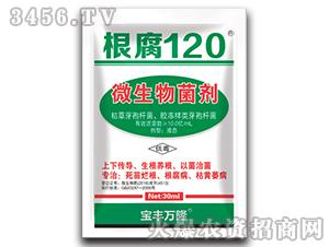 微生物菌剂-根腐120-宝丰万隆
