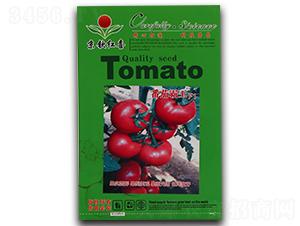 西红柿种子-番茄霸王F1-满天红日