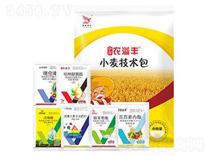 小麥技術包-伊岸農溢豐-伊岸農業