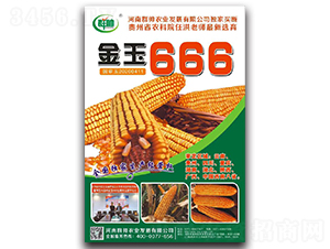 金玉666-玉米种子-群帅