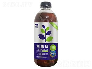 鱼蛋白含氨基酸水溶肥料-沃尔优