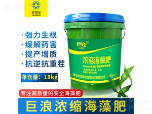 濃縮海藻肥(桶)-巨浪-愛聚多