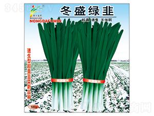 冬盛绿韭-韭菜种子-农大富民