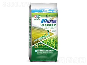 小麦返青灌浆肥-超能量-河北吨田