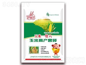 玉米高產套餐-玉米一管