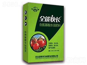 番茄专用含氨基酸水溶肥料-全能快长-为峰肥业