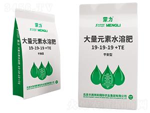 平衡型大量元素水溶肥料19-19-19+TE-蒙力-丰民同和