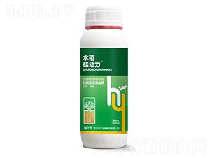 水稻硅动力-厚禾生物