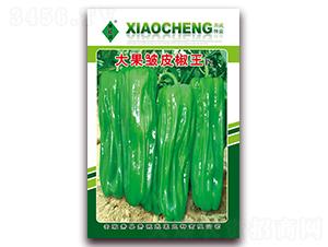 大果皱皮椒王-泡椒种子