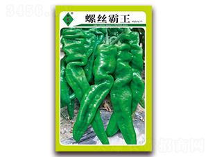 螺丝霸王-泡椒种子-萧