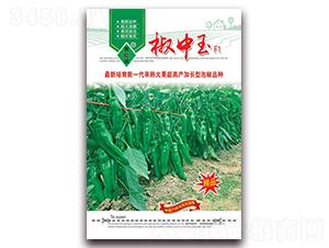 椒中玉-泡椒种子-萧诚