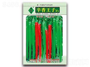 辛香王子-线椒种子-萧