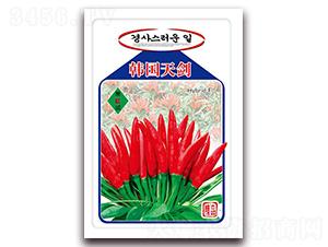 韩国天剑-朝天椒种子-