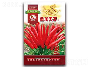 金龙天子-朝天椒种子-
