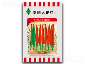 泰国大艳红-朝天椒种子