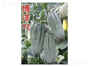 博洋72-甜瓜种子-凌