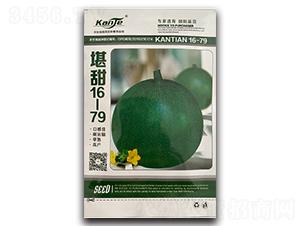 堪甜16-79-甜瓜种