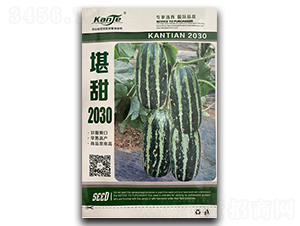 堪甜2030-甜瓜种子