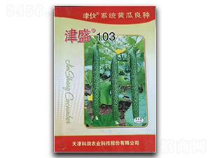 津盛103-黄瓜种子-