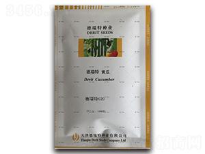 德瑞特620-黄瓜种子