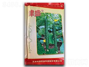 津盛寒丰58-黄瓜种子-凌广农业