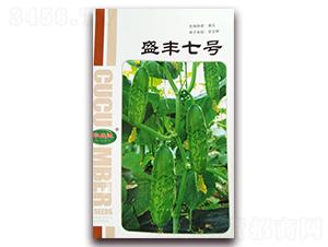 盛丰七号-黄瓜杂交种-华盛达