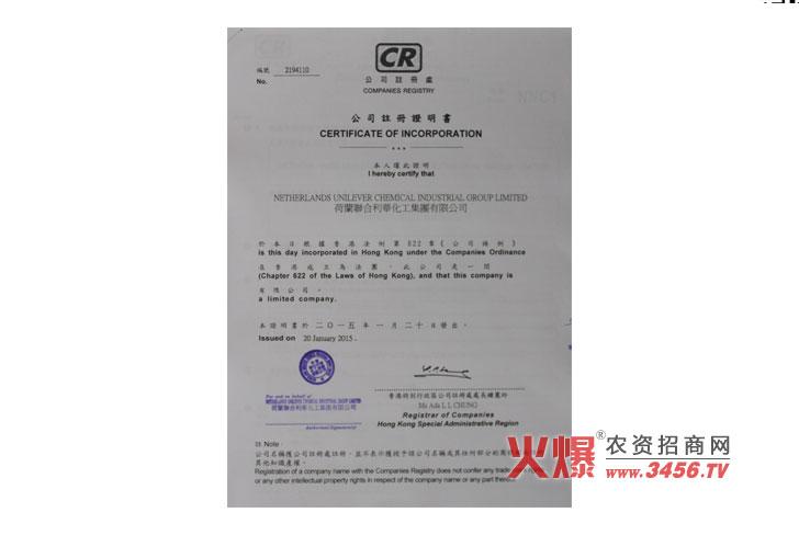 公司注册证明书-强芯国际集团