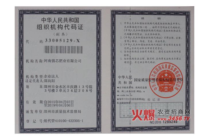 中华人民共和国组织机构代码证(副本)-强芯国际集团
