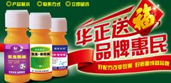 上海华正化工科技有限公司