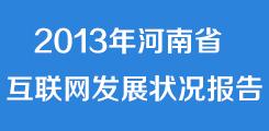 2013河南互联网发展状况报告