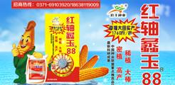 河南省金黎丰农业科技有限公司