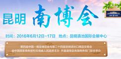 2016昆明南博会
