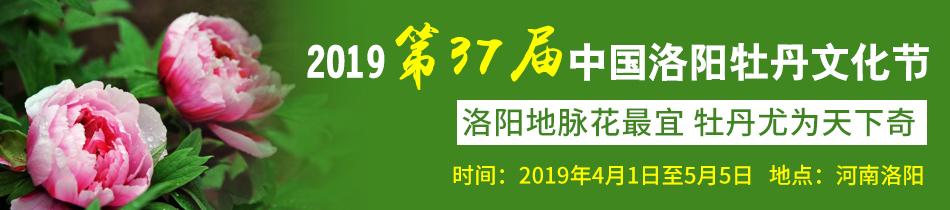 2019洛阳牡丹花会-2019年第37届中国洛阳牡丹文化节