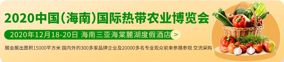 2020海南农博会-2020中国(海南)国际热带农业博览会